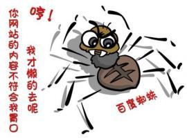 深圳网络蜘蛛是什么?
